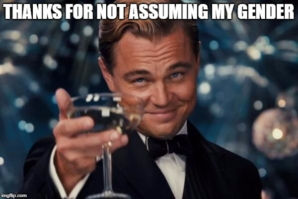 Leonardo Dicaprio Cheers Meme | THANKS FOR NOT ASSUMING MY GENDER | image tagged in memes,leonardo dicaprio cheers | made w/ Imgflip meme maker