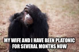 MY WIFE AND I HAVE BEEN PLATONIC FOR SEVERAL MONTHS NOW | made w/ Imgflip meme maker