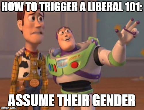 X, X Everywhere Meme | HOW TO TRIGGER A LIBERAL 101: ASSUME THEIR GENDER | image tagged in memes,x,x everywhere,x x everywhere | made w/ Imgflip meme maker