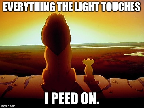 Pride Rock is one big urinal | EVERYTHING THE LIGHT TOUCHES I PEED ON. | image tagged in memes,lion king,urinal,bathroom humor,peeing,toilet | made w/ Imgflip meme maker