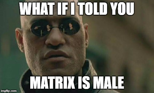 Matrix Morpheus Meme | WHAT IF I TOLD YOU MATRIX IS MALE | image tagged in memes,matrix morpheus | made w/ Imgflip meme maker