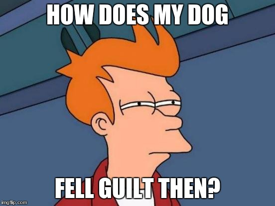 Futurama Fry Meme | HOW DOES MY DOG FELL GUILT THEN? | image tagged in memes,futurama fry | made w/ Imgflip meme maker