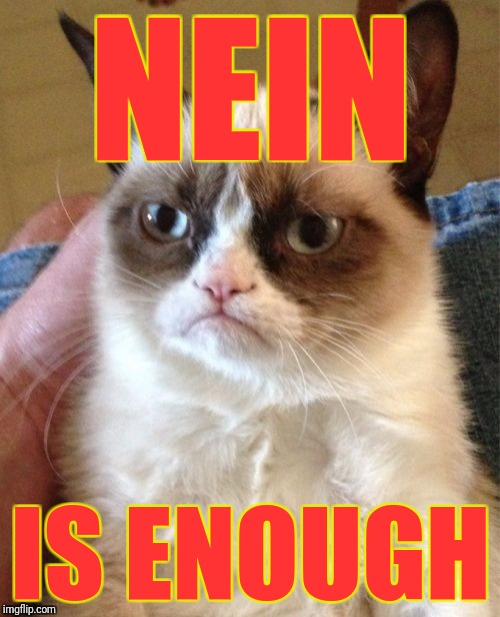 Grumpy Cat Meme | NEIN IS ENOUGH | image tagged in memes,grumpy cat | made w/ Imgflip meme maker