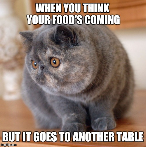 WHEN YOU THINK YOUR FOOD'S COMING BUT IT GOES TO ANOTHER TABLE | image tagged in food goes to another table | made w/ Imgflip meme maker