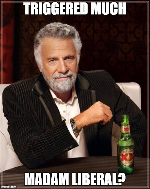 The Most Interesting Man In The World Meme | TRIGGERED MUCH MADAM LIBERAL? | image tagged in memes,the most interesting man in the world | made w/ Imgflip meme maker