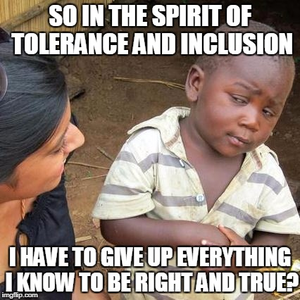 Leftism Ultimately Strips You Of Your Freedom To Choose The Right Thing Except By Your Life | SO IN THE SPIRIT OF TOLERANCE AND INCLUSION I HAVE TO GIVE UP EVERYTHING I KNOW TO BE RIGHT AND TRUE? | image tagged in memes,third world skeptical kid,leftists,progressives | made w/ Imgflip meme maker