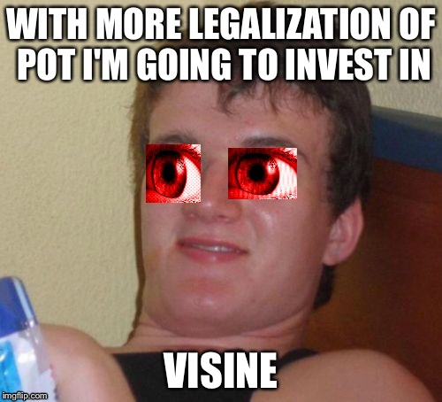 10 Guy Meme | WITH MORE LEGALIZATION OF POT I'M GOING TO INVEST IN VISINE | image tagged in memes,10 guy | made w/ Imgflip meme maker