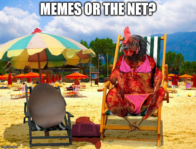 MEMES OR THE NET? | made w/ Imgflip meme maker