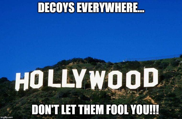 Scumbag Hollywood | DECOYS EVERYWHERE... DON'T LET THEM FOOL YOU!!! | image tagged in scumbag hollywood | made w/ Imgflip meme maker