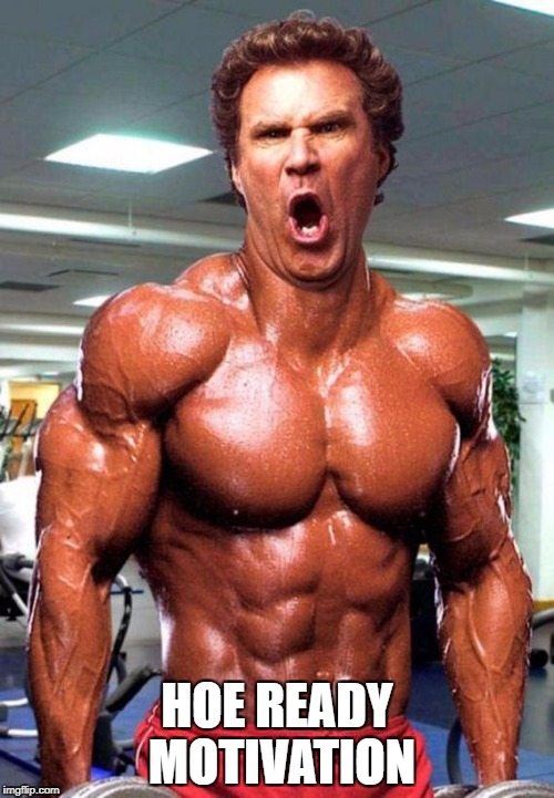 Will Ferrell on Steroids | HOE READY MOTIVATION | image tagged in will ferrell on steroids | made w/ Imgflip meme maker