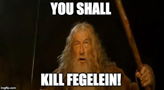 You Shall Not Pass Gandalf | YOU SHALL KILL FEGELEIN! | image tagged in you shall not pass gandalf | made w/ Imgflip meme maker