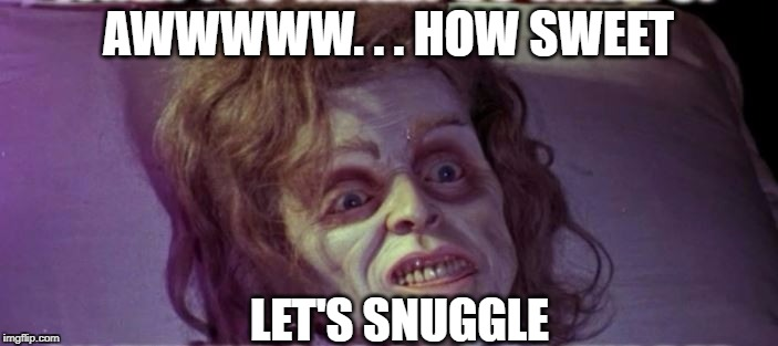AWWWWW. . . HOW SWEET LET'S SNUGGLE | made w/ Imgflip meme maker