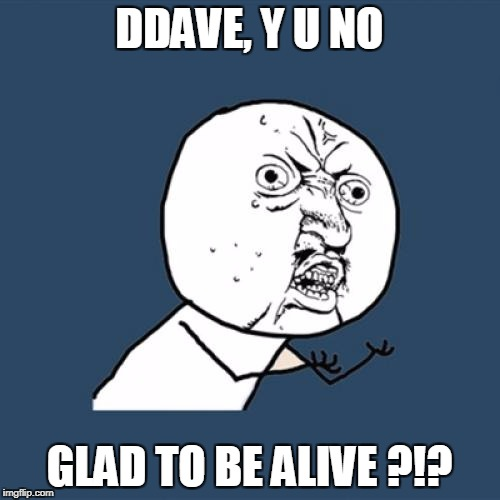 Y U No Meme | DDAVE, Y U NO GLAD TO BE ALIVE ?!? | image tagged in memes,y u no | made w/ Imgflip meme maker
