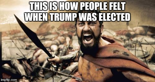 Sparta Leonidas Meme | THIS IS HOW PEOPLE FELT WHEN TRUMP WAS ELECTED | image tagged in memes,sparta leonidas | made w/ Imgflip meme maker