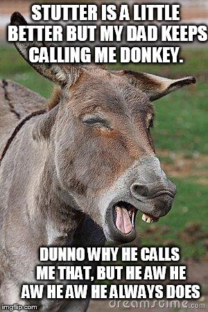 STUTTER IS A LITTLE BETTER BUT MY DAD KEEPS CALLING ME DONKEY. DUNNO WHY HE CALLS ME THAT, BUT HE AW HE AW HE AW HE ALWAYS DOES | image tagged in donkey | made w/ Imgflip meme maker