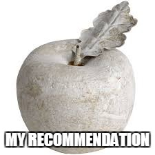 MY RECOMMENDATION | made w/ Imgflip meme maker