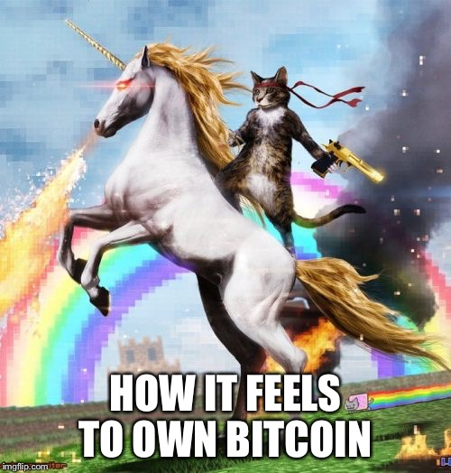 Welcome To The Internets Meme | HOW IT FEELS TO OWN BITCOIN | image tagged in memes,welcome to the internets | made w/ Imgflip meme maker