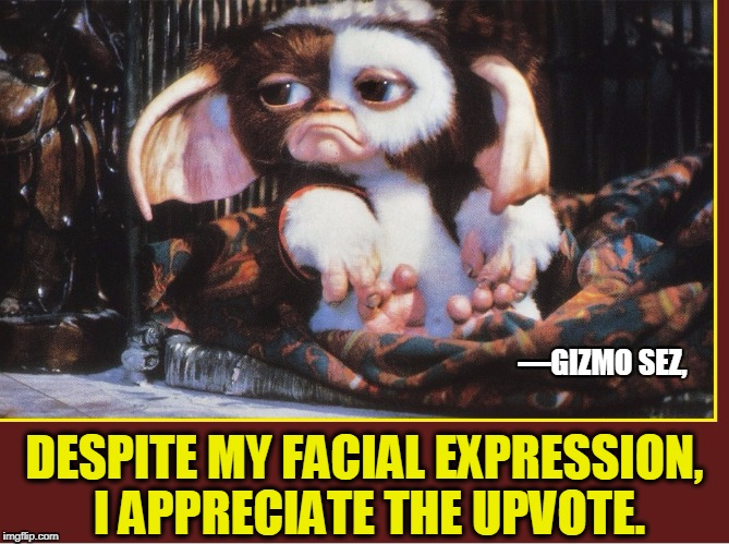 A Gizmo Gremlin is Hungry for an Upvote...after midnight | —GIZMO SEZ, DESPITE MY FACIAL EXPRESSION, I APPRECIATE THE UPVOTE. | image tagged in vince vance,gizmo,gremlins,the 80s,upvote | made w/ Imgflip meme maker