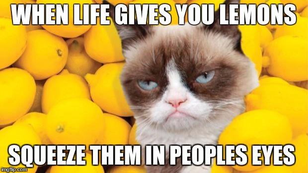 Grumpy Cat lemons | WHEN LIFE GIVES YOU LEMONS SQUEEZE THEM IN PEOPLES EYES | image tagged in grumpy cat lemons | made w/ Imgflip meme maker