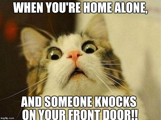 Scared Cat Meme | WHEN YOU'RE HOME ALONE, AND SOMEONE KNOCKS ON YOUR FRONT DOOR!! | image tagged in memes,scared cat | made w/ Imgflip meme maker