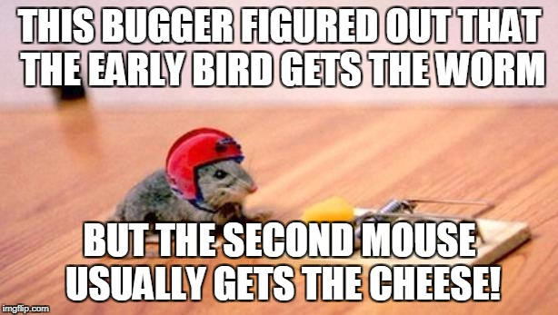 Mouse Trap | THIS BUGGER FIGURED OUT THAT THE EARLY BIRD GETS THE WORM BUT THE SECOND MOUSE USUALLY GETS THE CHEESE! | image tagged in mouse trap | made w/ Imgflip meme maker
