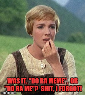 "Julie Andrews confused | WAS IT, ""DO RA MEME"",  OR ""DO RA ME""?  SHIT, I FORGOT! 
