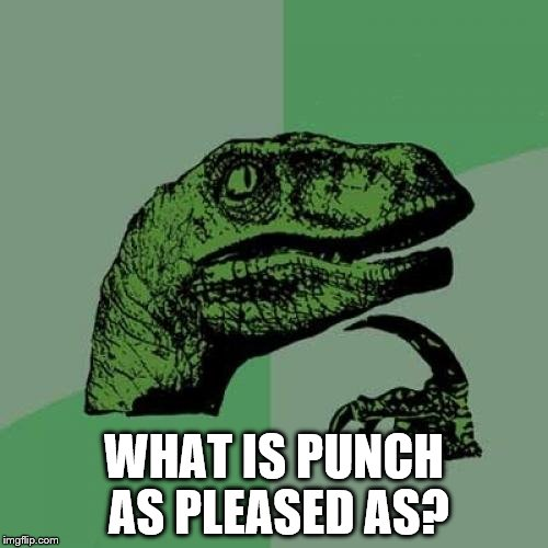 Philosoraptor Meme | WHAT IS PUNCH AS PLEASED AS? | image tagged in memes,philosoraptor | made w/ Imgflip meme maker