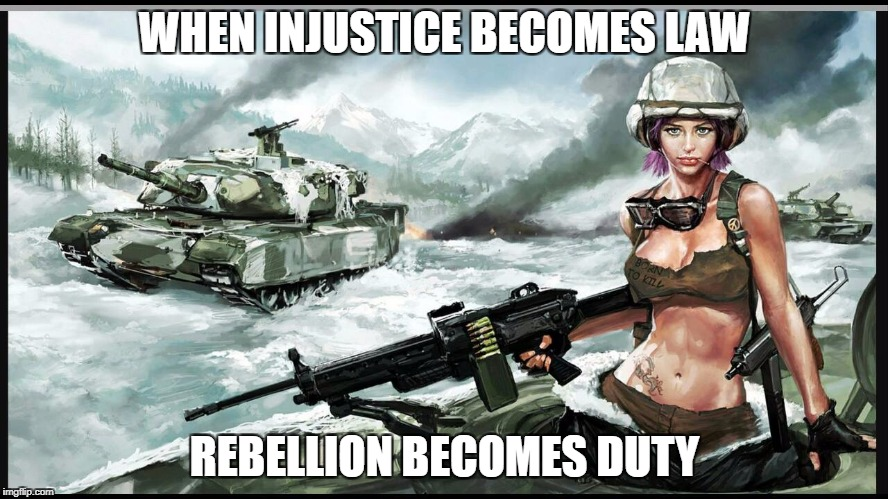 WHEN INJUSTICE BECOMES LAW REBELLION BECOMES DUTY | image tagged in patriotism | made w/ Imgflip meme maker