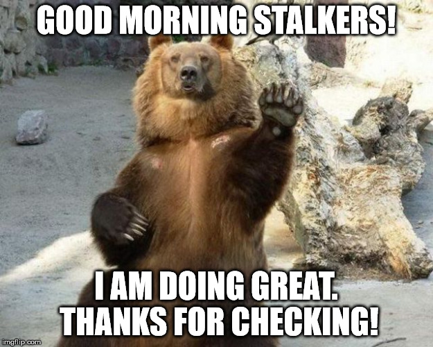GOOD MORNING STALKERS! I AM DOING GREAT. THANKS FOR CHECKING! | image tagged in bearwave | made w/ Imgflip meme maker