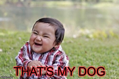 Evil Toddler Meme | THAT'S MY DOG | image tagged in memes,evil toddler | made w/ Imgflip meme maker