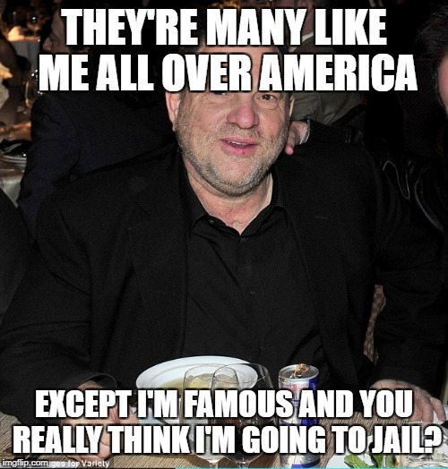THEY'RE MANY LIKE ME ALL OVER AMERICA EXCEPT I'M FAMOUS AND YOU REALLY THINK I'M GOING TO JAIL? | image tagged in harvey weinstein | made w/ Imgflip meme maker