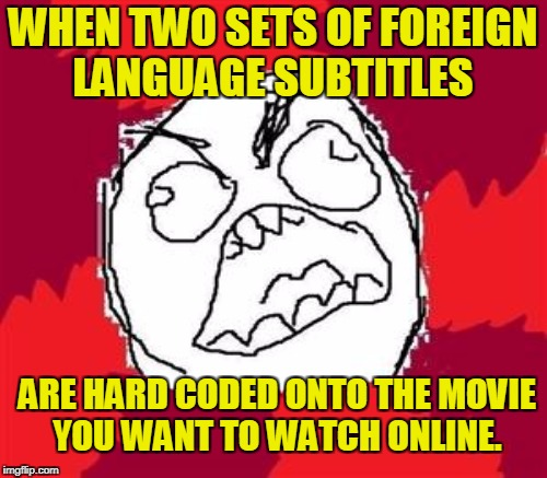 WHEN TWO SETS OF FOREIGN LANGUAGE SUBTITLES ARE HARD CODED ONTO THE MOVIE YOU WANT TO WATCH ONLINE. | made w/ Imgflip meme maker