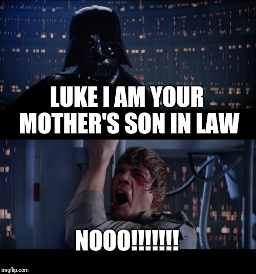 Star Wars No Meme | LUKE I AM YOUR MOTHER'S SON IN LAW NOOO!!!!!!! | image tagged in memes,star wars no | made w/ Imgflip meme maker
