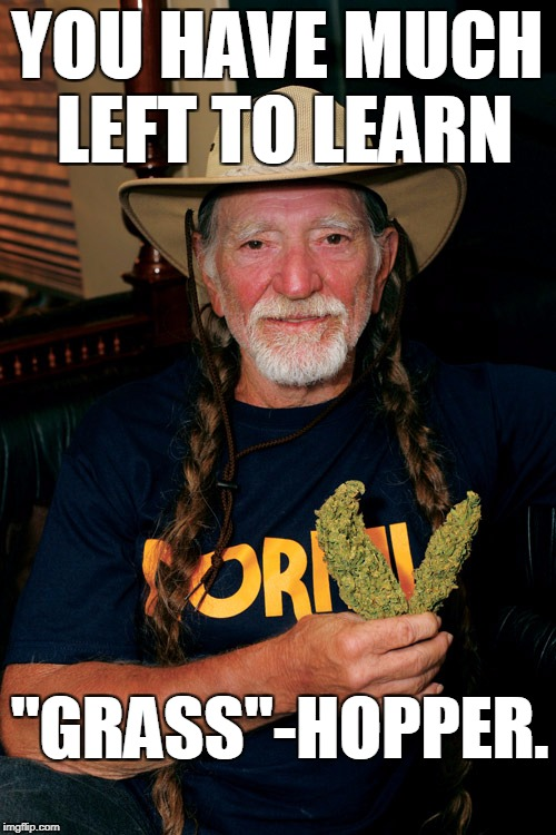 "YOU HAVE MUCH LEFT TO LEARN ""GRASS""-HOPPER. 