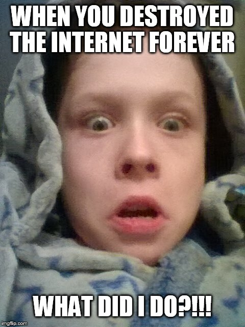 WHEN YOU DESTROYED THE INTERNET FOREVER WHAT DID I DO?!!! | image tagged in what | made w/ Imgflip meme maker