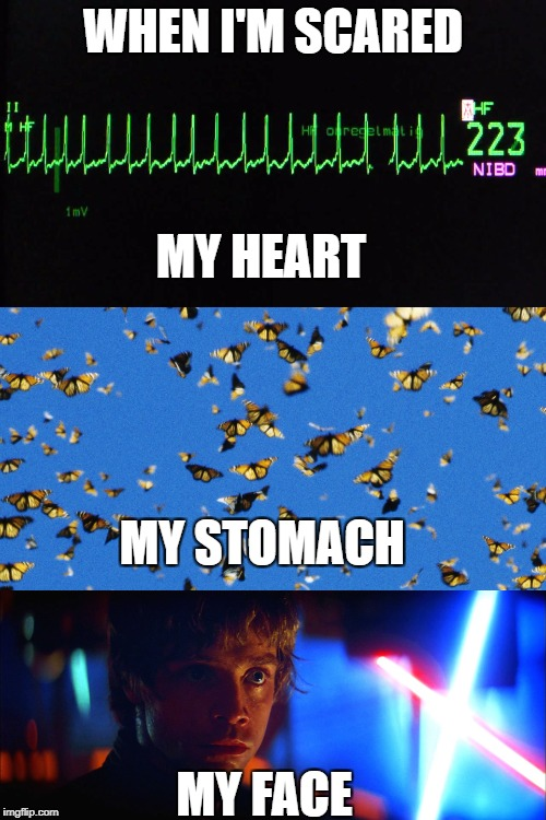 What Goes On Inside | WHEN I'M SCARED MY FACE MY HEART MY STOMACH | image tagged in scared,inside,heart,butterflies,luke skywalker,the empire strikes back | made w/ Imgflip meme maker