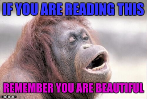 Monkey OOH | IF YOU ARE READING THIS REMEMBER YOU ARE BEAUTIFUL | image tagged in memes,monkey ooh | made w/ Imgflip meme maker