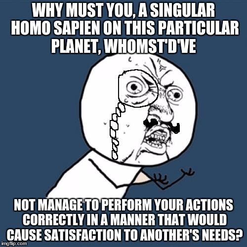 Y U No Meme | WHY MUST YOU, A SINGULAR HOMO SAPIEN ON THIS PARTICULAR PLANET, WHOMST'D'VE NOT MANAGE TO PERFORM YOUR ACTIONS CORRECTLY IN A MANNER THAT WO | image tagged in memes,y u no | made w/ Imgflip meme maker