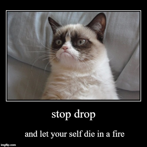 stop drop | and let your self die in a fire | image tagged in funny,demotivationals | made w/ Imgflip demotivational maker