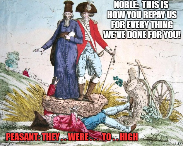 high taxes | NOBLE:  THIS IS HOW YOU REPAY US FOR EVERY THING WE'VE DONE FOR YOU! PEASANT: THEY . . WERE . . .  TO . . HIGH | image tagged in french revolution | made w/ Imgflip meme maker