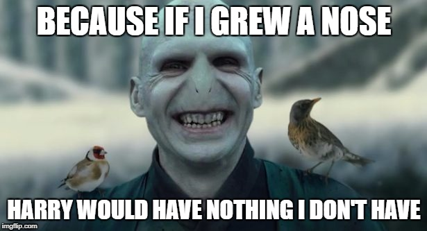 BECAUSE IF I GREW A NOSE HARRY WOULD HAVE NOTHING I DON'T HAVE | made w/ Imgflip meme maker