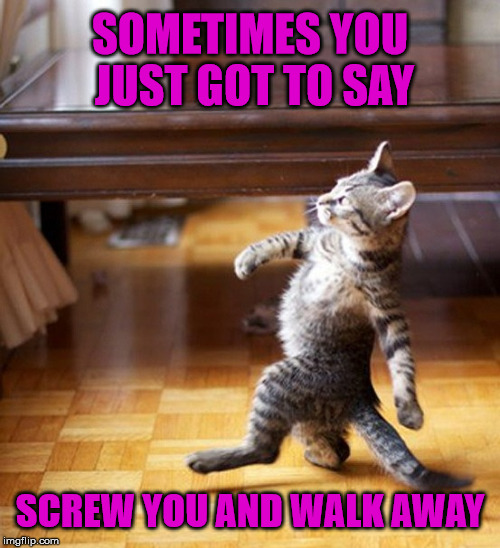 Walking Away Like A Boss | SOMETIMES YOU JUST GOT TO SAY SCREW YOU AND WALK AWAY | image tagged in cat walking like a boss,memes,enough is enough | made w/ Imgflip meme maker