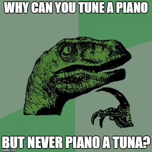 Philosoraptor Meme | WHY CAN YOU TUNE A PIANO BUT NEVER PIANO A TUNA? | image tagged in memes,philosoraptor | made w/ Imgflip meme maker