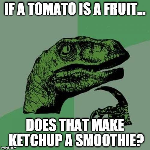 Philosoraptor Meme | IF A TOMATO IS A FRUIT... DOES THAT MAKE KETCHUP A SMOOTHIE? | image tagged in memes,philosoraptor | made w/ Imgflip meme maker