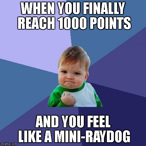 1000!!!!!! | WHEN YOU FINALLY REACH 1000 POINTS AND YOU FEEL LIKE A MINI-RAYDOG | image tagged in memes,success kid,raydog,1000 points | made w/ Imgflip meme maker