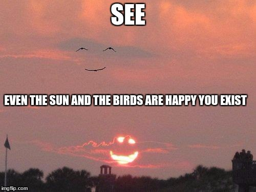 Smiling Sun | SEE EVEN THE SUN AND THE BIRDS ARE HAPPY YOU EXIST | image tagged in imgflip | made w/ Imgflip meme maker