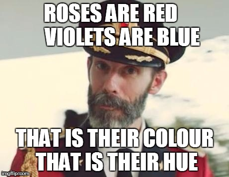 Just another poem by captain obvious  | ROSES ARE RED       VIOLETS ARE BLUE THAT IS THEIR COLOUR  THAT IS THEIR HUE | image tagged in capt obvious | made w/ Imgflip meme maker