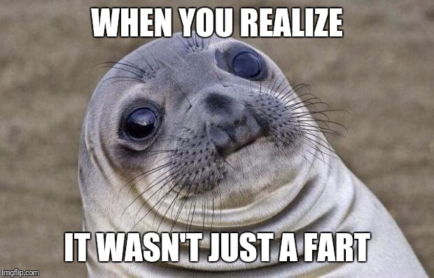 Awkward Moment Sealion Meme | WHEN YOU REALIZE IT WASN'T JUST A FART | image tagged in memes,awkward moment sealion | made w/ Imgflip meme maker