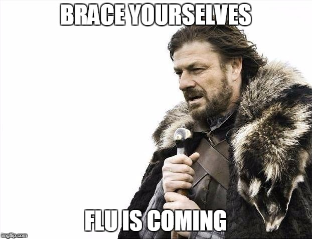 Brace Yourselves X is Coming Meme | BRACE YOURSELVES FLU IS COMING | image tagged in memes,brace yourselves x is coming | made w/ Imgflip meme maker