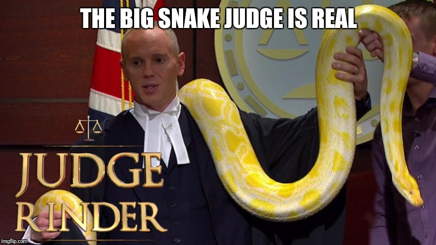 THE BIG SNAKE JUDGE IS REAL | made w/ Imgflip meme maker